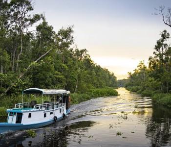Borneo (Kalimantan)