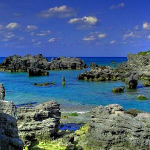 Bermudy / 980